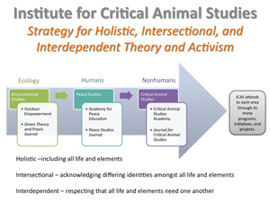 Institute of Critical Animal Studies Strategy