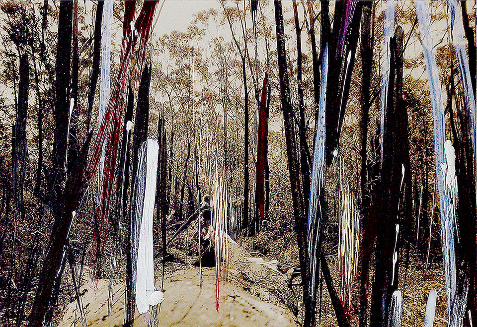Photograph of forest and human figure in distance, looking burnt, painted over and scratched